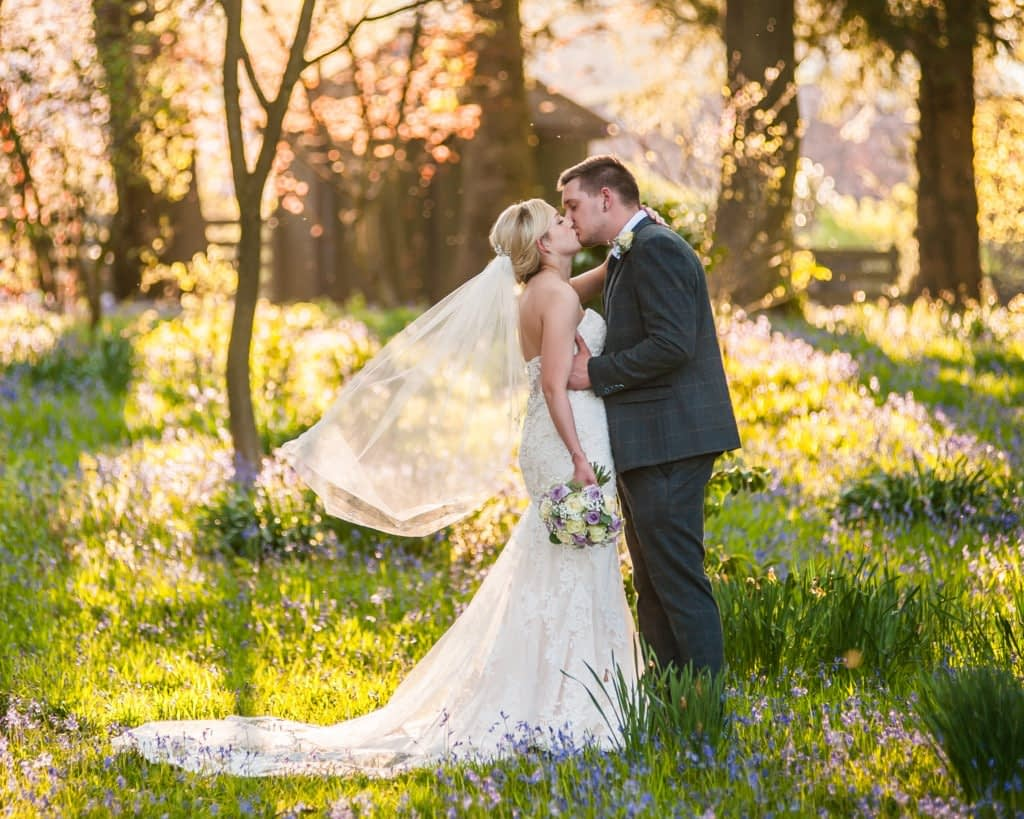 Bride and groom kissing in bluebells at sunset, Wortley Hall, Sheffield wedding photography