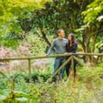 Laughing in grounds of Whirlowbrook Hall, pre-wedding photographs Sheffield