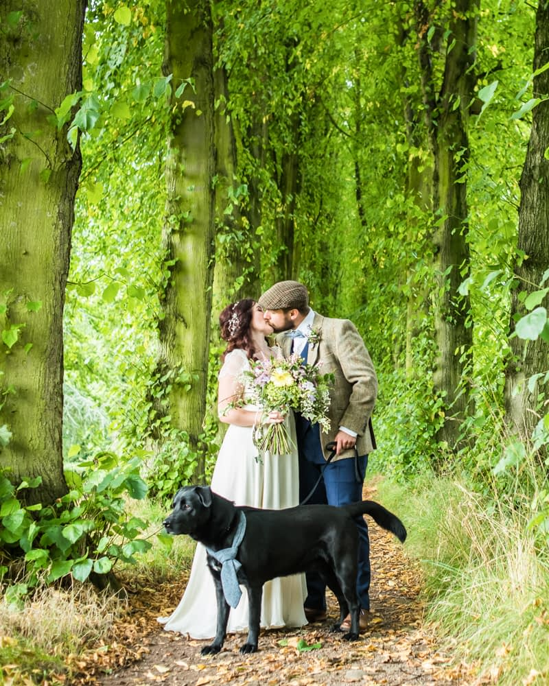 Bride and groom kissing on tree walk,  Wentworth Castle Garden wedding, Sheffield photographers