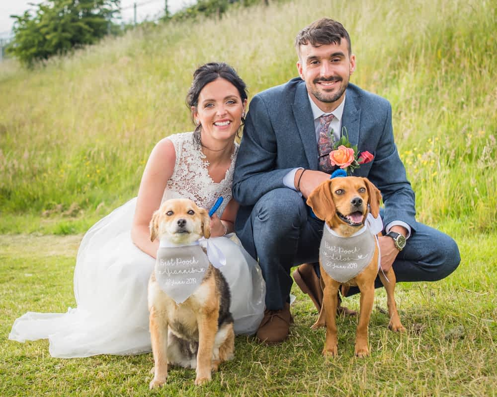 Bride and groom with their dogs, Sheffield weddings